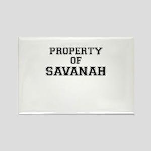Property of SAVANAH Magnets