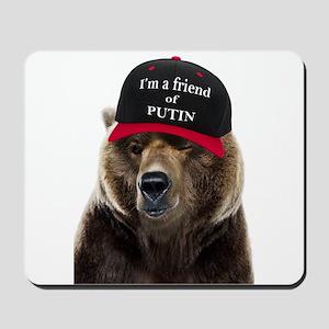 I'm a Friend of Putin Mousepad