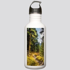 Down the Trail Stainless Water Bottle 1.0L