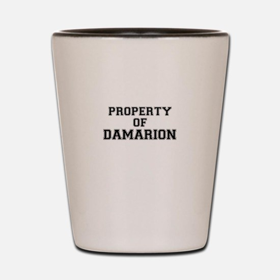 Property of DAMARION Shot Glass