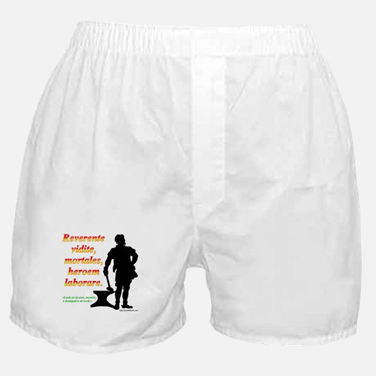 Look on in awe, mortals Boxer Shorts