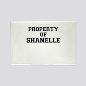 Property of SHANELLE Magnets