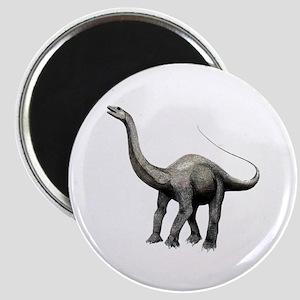 Apatosaurus Magnet