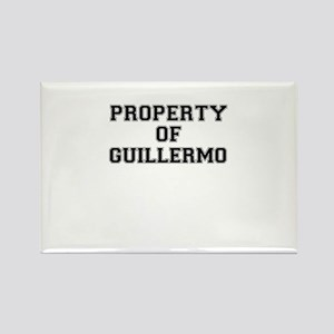 Property of GUILLERMO Magnets