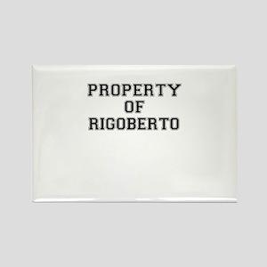Property of RIGOBERTO Magnets