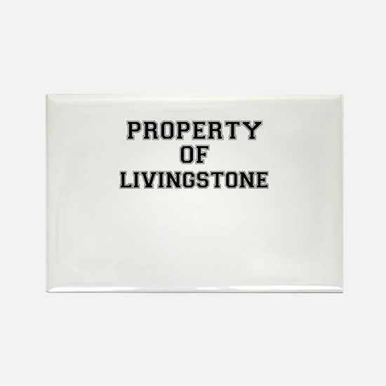 Property of LIVINGSTONE Magnets