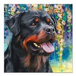 Rottweiler Painting Square Car Magnet 3