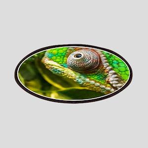 Chameleon Patch