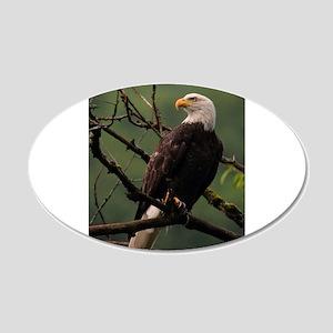 Majestic Bald Eagle Wall Decal