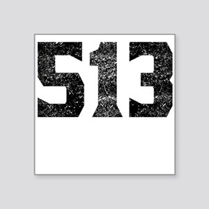 513 Cincinnati Area Code Sticker