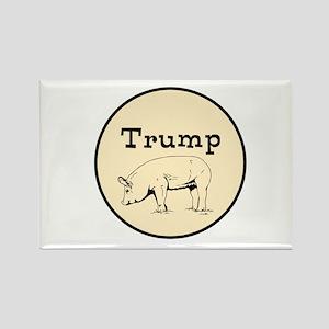 Trump pig, anti tump Magnets