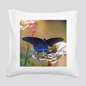 Spicebush Swallowtail Square Canvas Pillow