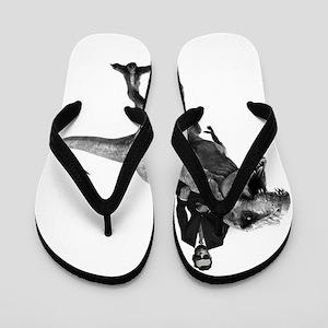 Dino Abe Flip Flops