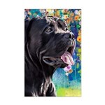 Cane Corso Painting Posters