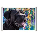 Cane Corso Painting Banner