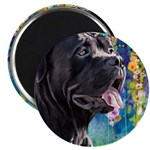 Cane Corso Painting Magnets