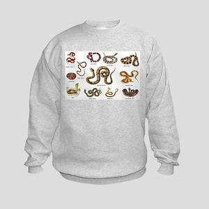 snakes Sweatshirt