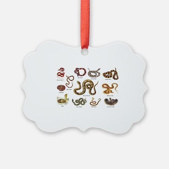 snakes Ornament