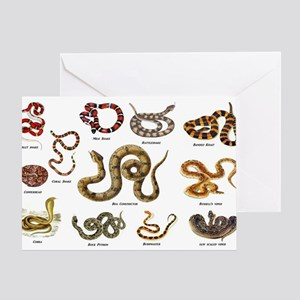 snakes Greeting Cards