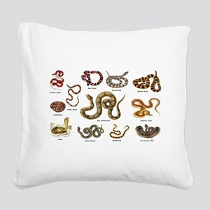 snakes Square Canvas Pillow