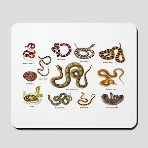 snakes Mousepad