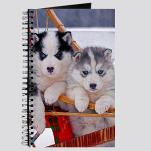 Husky Puppies in sled Journal