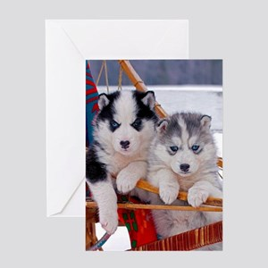 Husky Puppies in sled Greeting Cards