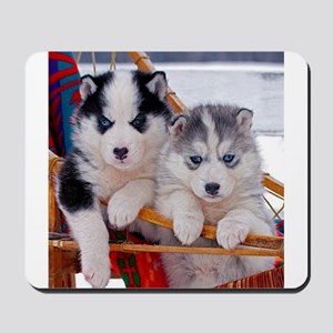 Husky Puppies in sled Mousepad