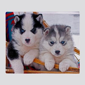 Husky Puppies in sled Throw Blanket