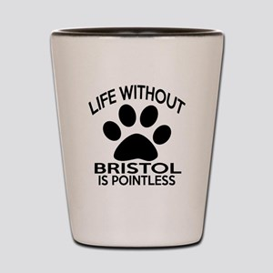Life Without Bristol Cat Designs Shot Glass