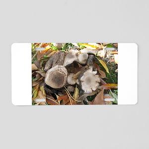 IMG_9473 mushrooms and fall Aluminum License Plate