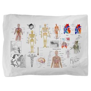 Human Anatomy Charts Pillow Sham