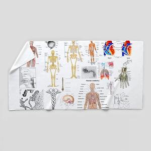 Human Anatomy Charts Beach Towel