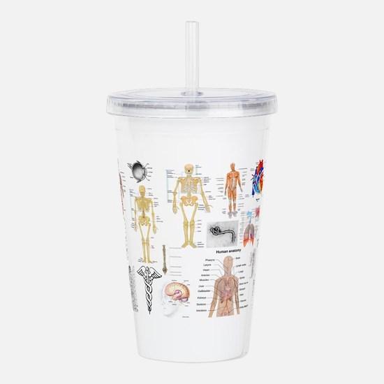 Human Anatomy Charts Acrylic Double-wall Tumbler