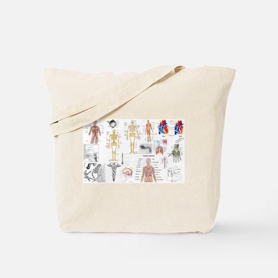 Human Anatomy Charts Tote Bag