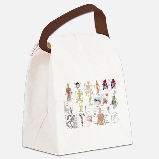 Human Anatomy Charts Canvas Lunch Bag