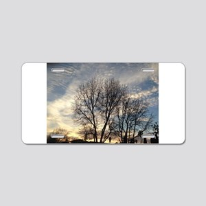 delicate winter trees with Aluminum License Plate