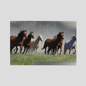 Herd of Running Horses Rectangle Magnet