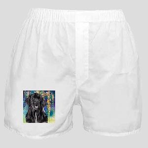 Newfoundland Painting Boxer Shorts