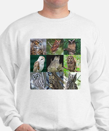 Unique Hawk owl Sweatshirt