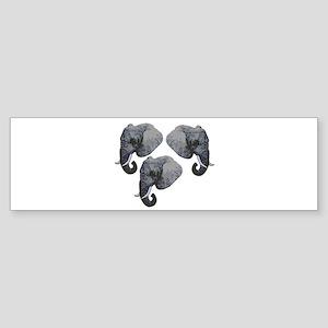 HERD Bumper Sticker