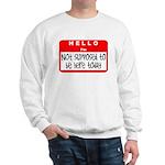 Hello I'm NSTBHT Sweatshirt