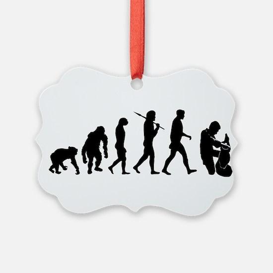 Potter Evolution Ornament