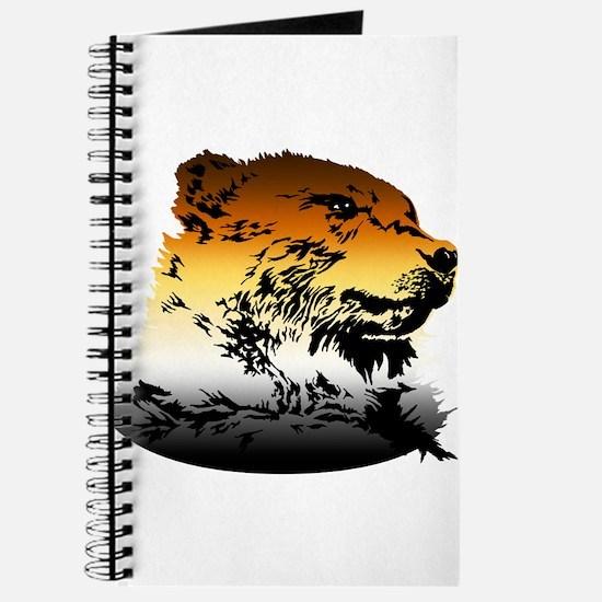 Pride Bear Colors Journal
