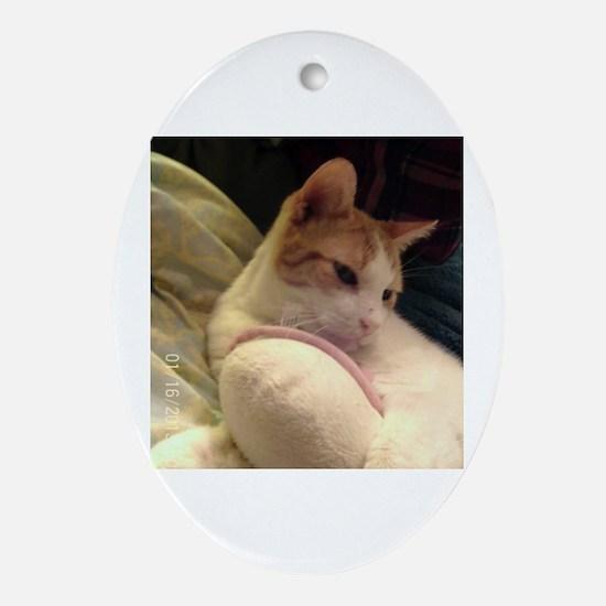 Cute Gizmo Oval Ornament