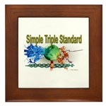 STS Framed Tile