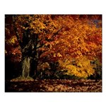 Fall 2016 Tree Small Poster
