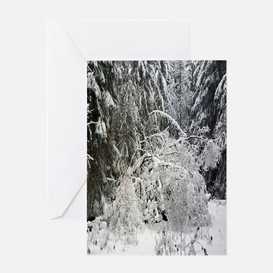 Snowy Christmas Greeting Cards