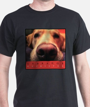 yellow_lab_nose_FRAME T-Shirt