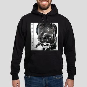 BLACK_LAB_SNOW_FRAME Hoodie (dark)